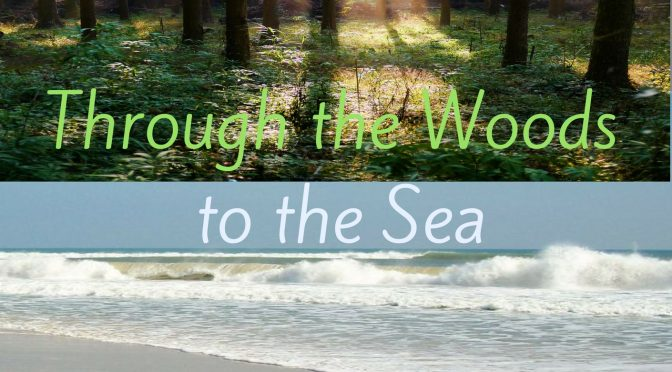 Through the Woods to the Sea: A Journey of Becoming Me